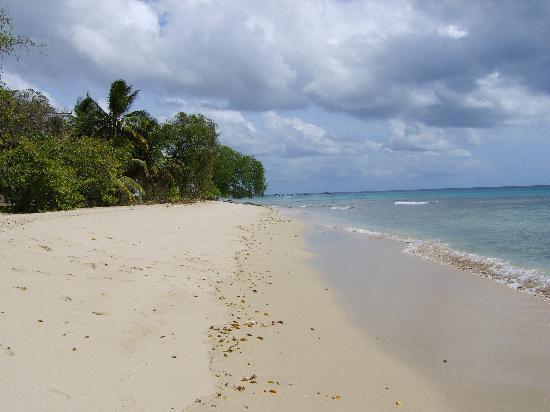 Лучшие пляжи Южного Гоа 90