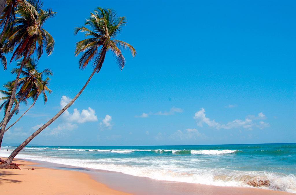 Лучшие пляжи Южного Гоа 12