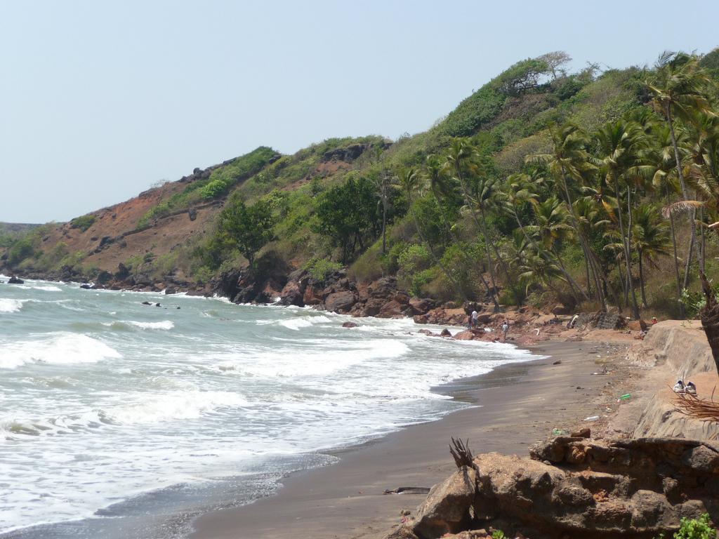 Лучшие пляжи Южного Гоа 113