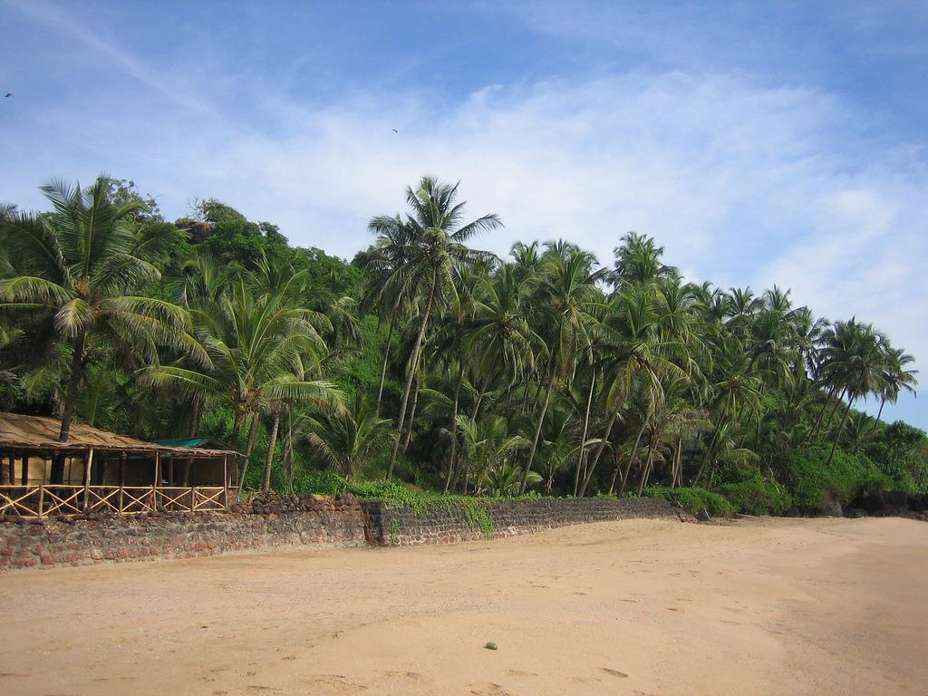 Лучшие пляжи Южного Гоа 69