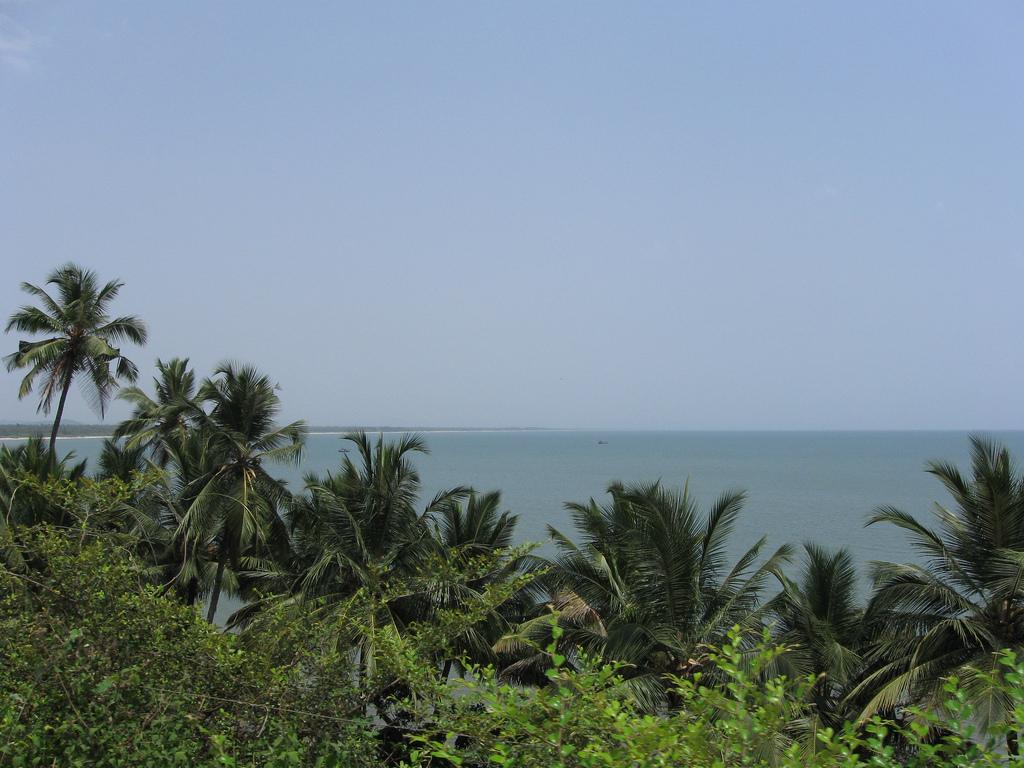 Лучшие пляжи Южного Гоа 84