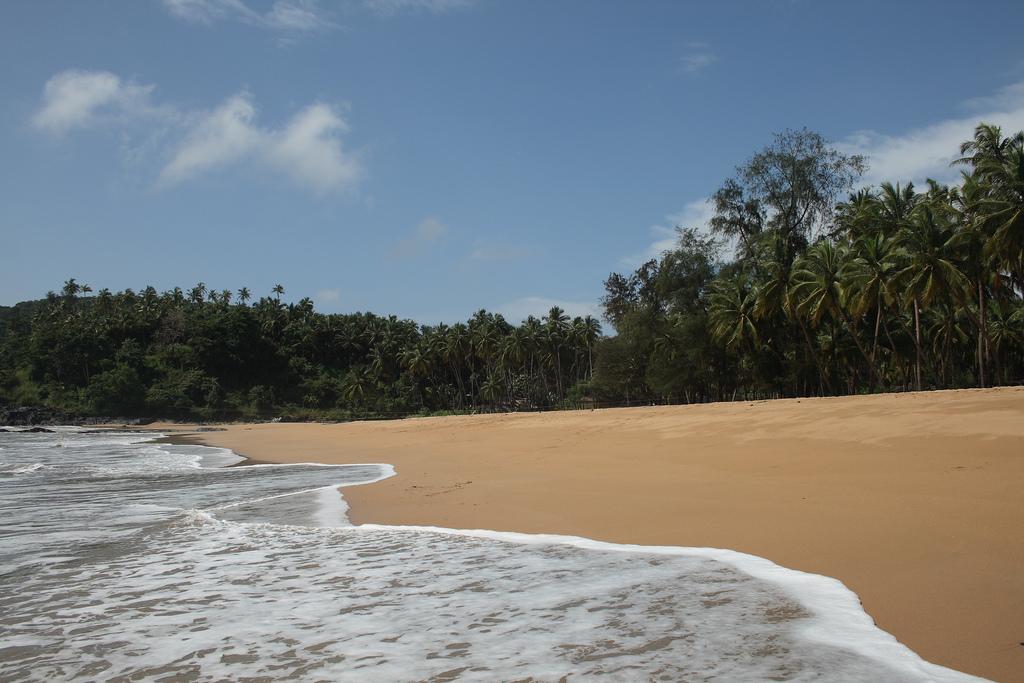 Лучшие пляжи Южного Гоа 95