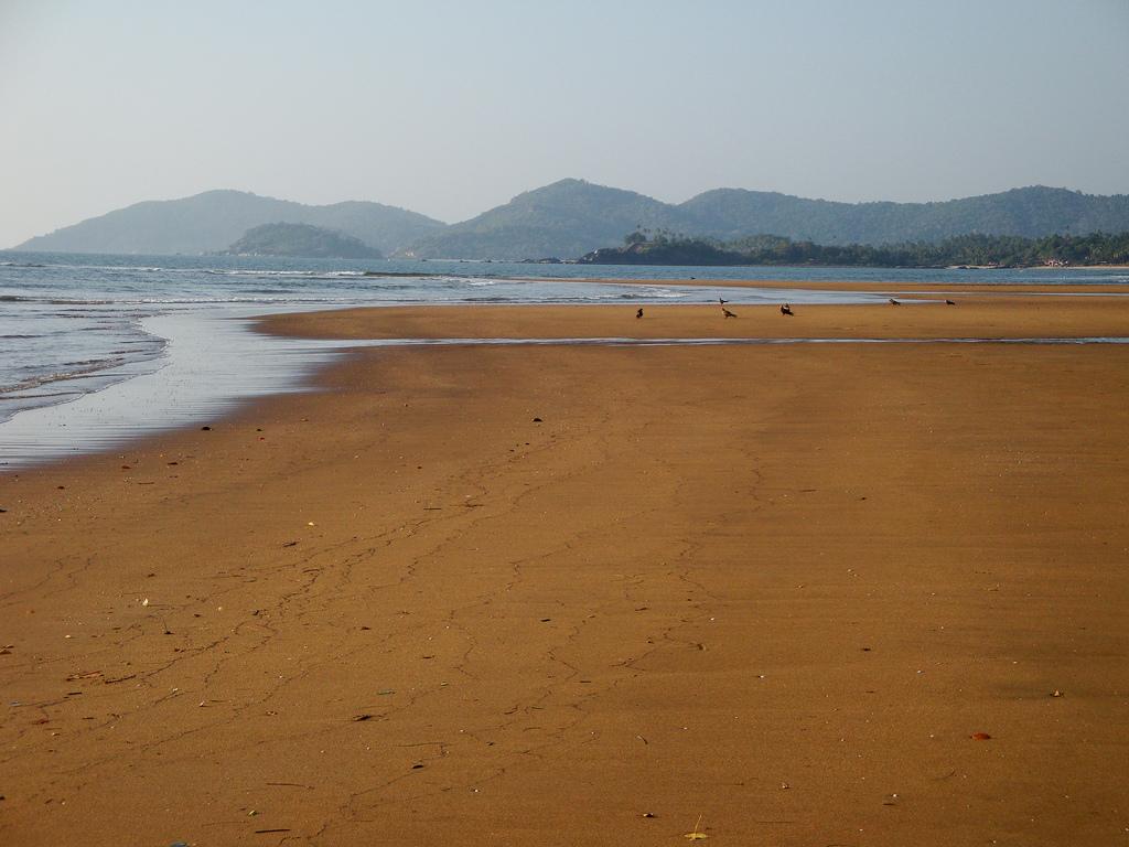 Лучшие пляжи Южного Гоа 50