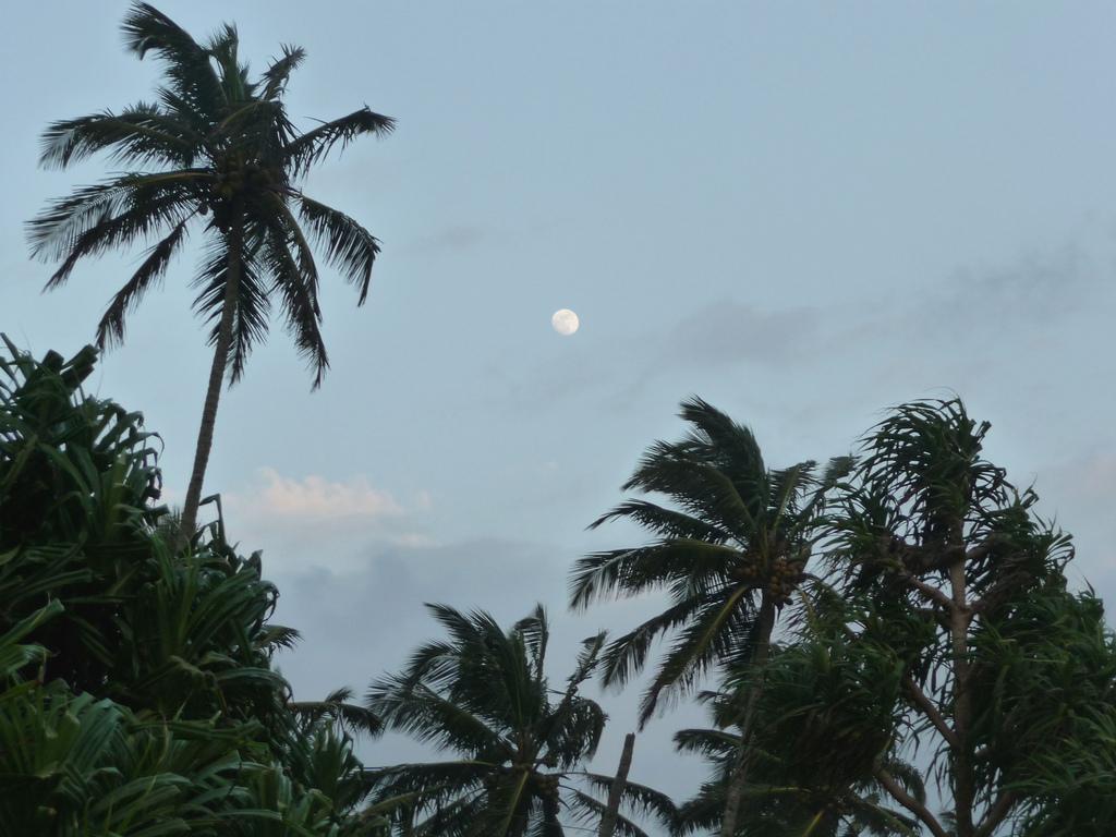Лучшие пляжи Южного Гоа 116