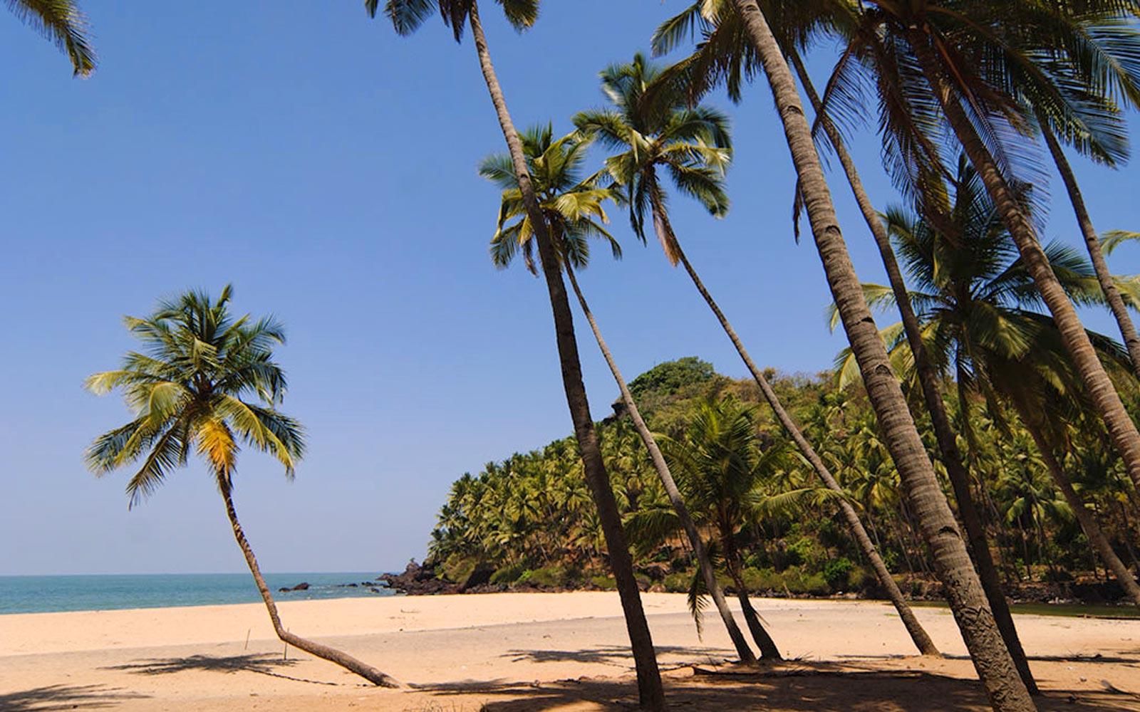 Лучшие пляжи Южного Гоа 106