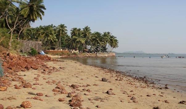 Лучшие пляжи Южного Гоа 86