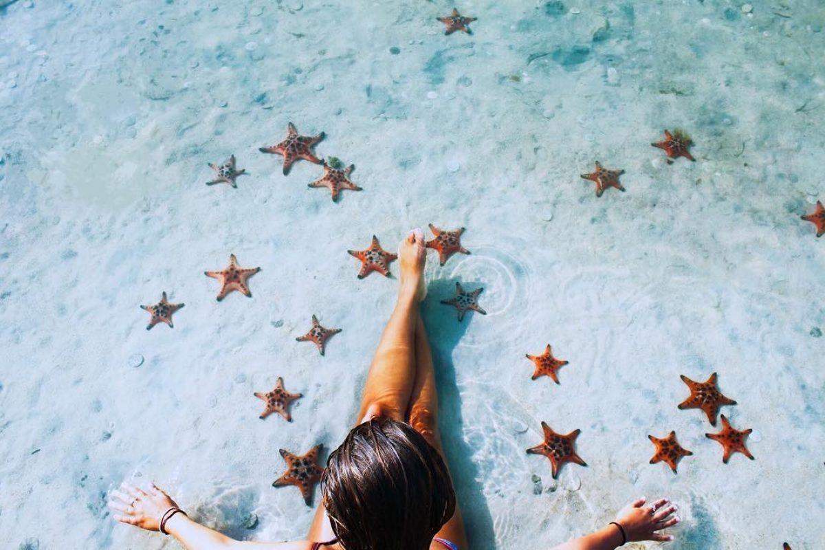 """особый пляж во Вьетнаме, где морские """"звезды"""" прямо на пляже."""